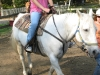 3-horse-riding